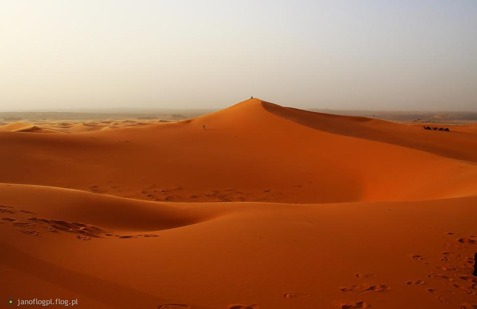 Ślady na piachu