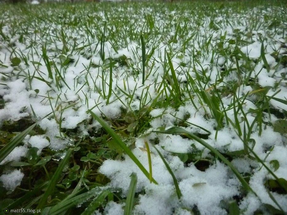 Pierwszy śnieg 27-11-2014