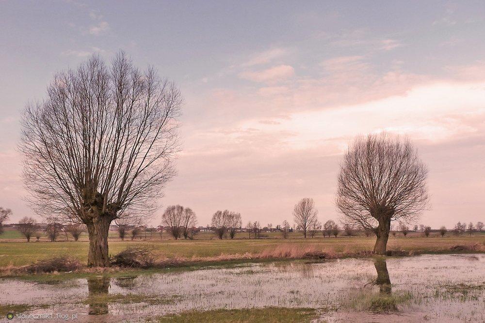 a na łąkach ciszy szept słychać ... i jedno z moich ulubionych miejsc :)