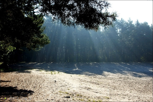 http://s13.flog.pl/media/foto_middle/9553403_blaski-jesieni-.jpg