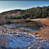 Barwy zimy .... ::